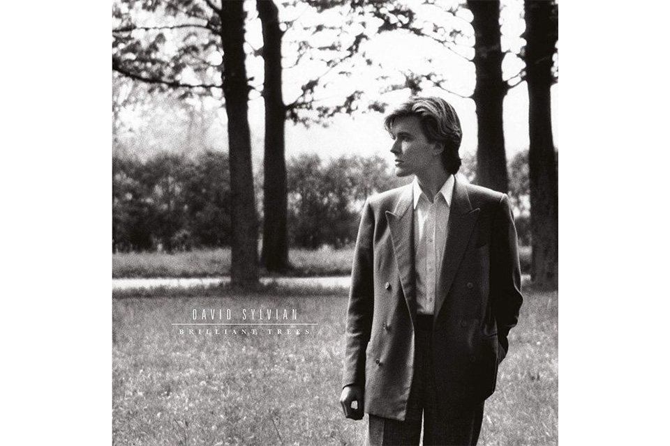 デヴィッド・シルヴィアンのソロ・アルバムが2019年にリイシュー