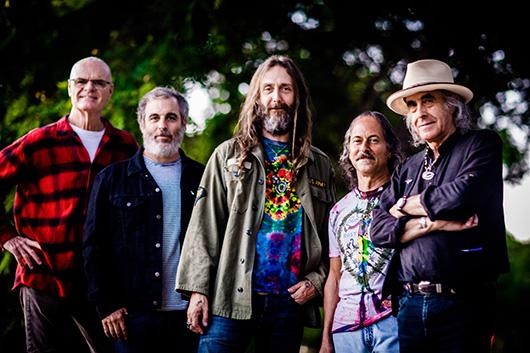 クリス・ロビンソンの新バンド、グリーン・リーフ・ラスラーズがストーンズのカヴァー「No Expectations」をリリース