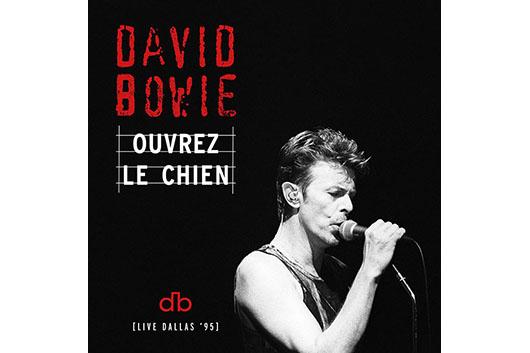 デヴィッド・ボウイ、 1995年アウトサイド・ツアーの未発表ライヴ音源がストリーミング限定でデジタル配信決定!