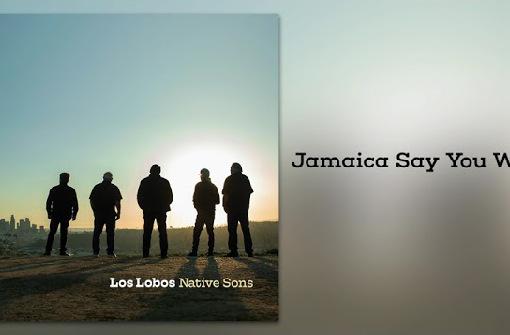 ロス・ロボス、7/30発売の新カヴァー集『Native Sons』から「Jamaica Say You Will」公開