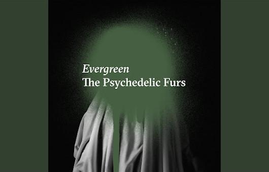 サイケデリック・ファーズ、新曲「Evergreen」公開